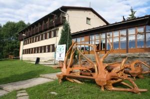 Hotel Lesák